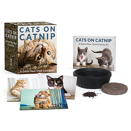 Cats on Catnip Kit Mini Edition