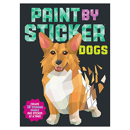 Paint by Sticker Books