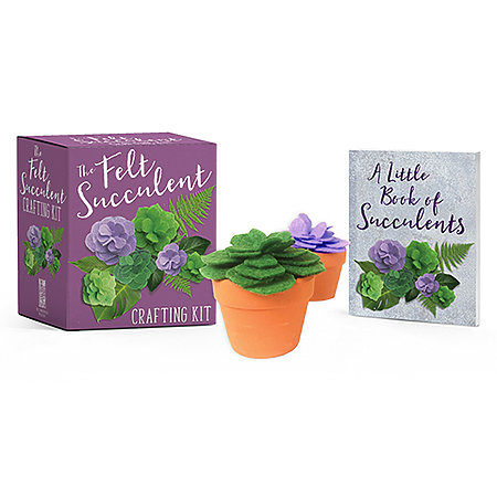 The Felt Succulent Crafting Kit Mini Edition