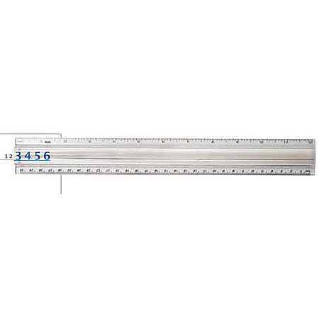 "12"" Clear 2X Magnifier Ruler"